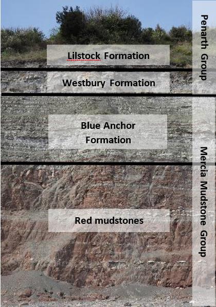 Penarth Head stratigraphy